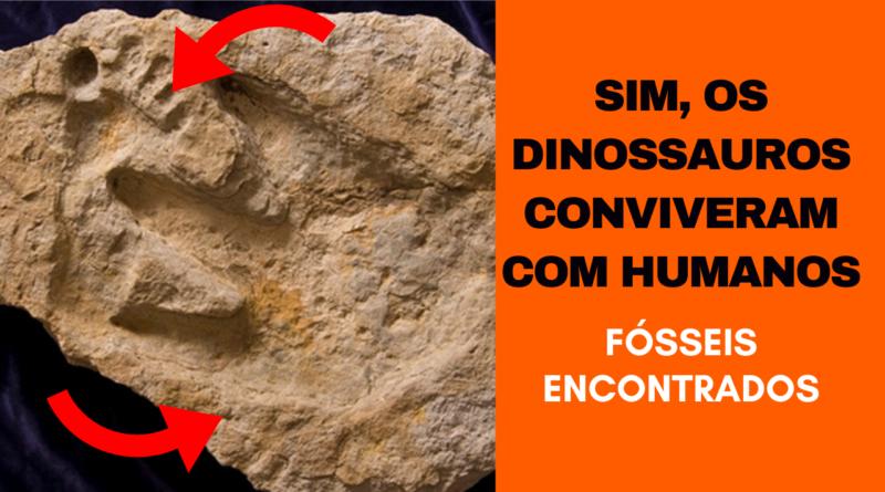 Dinossauros Coexistiram com Humanos